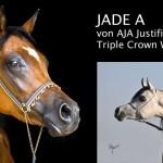 Collage Jade A-deutsch