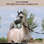 Aja Justified, Triple Crown Winner