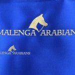 Malenga Arabians Logo neu